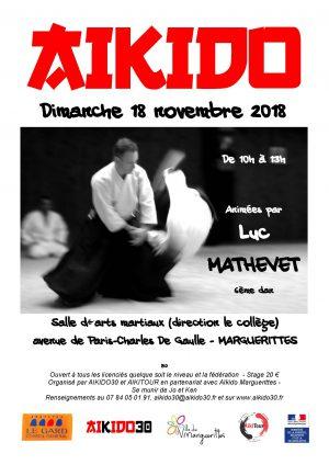Stage d'Aikido dimanche 18 novembre Marguerittes (30) Luc Mathevet 6ème dan