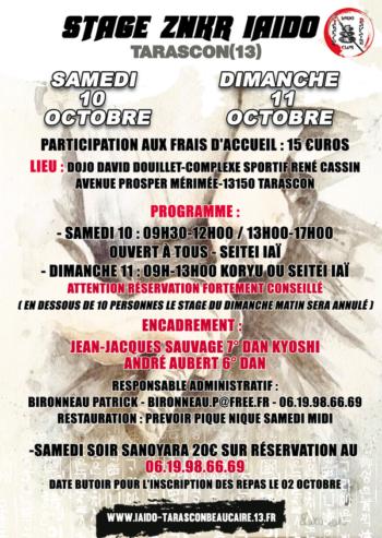 stage iaido tarascon octobre 2020 600